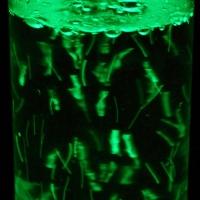 Двусторонняя подсветка для воздушно-пузырьковых колонн.
